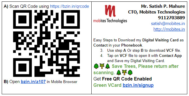 Pro Interactive Business Card