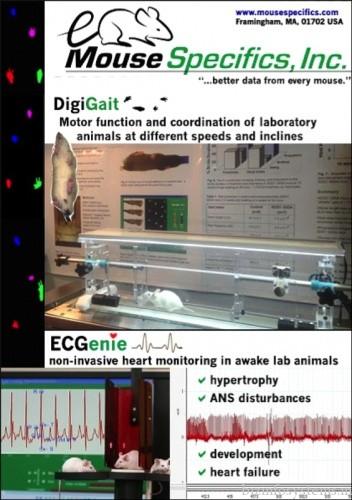 Mouse Specifics, INC / Image 3