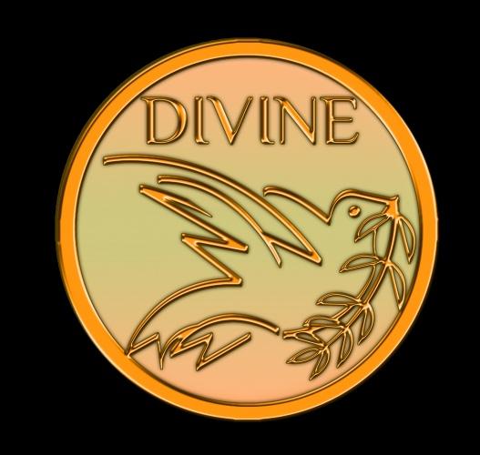 Divine Music Store